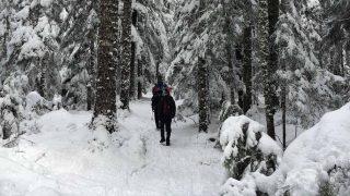 Mount Rainier Winter Hike Featured