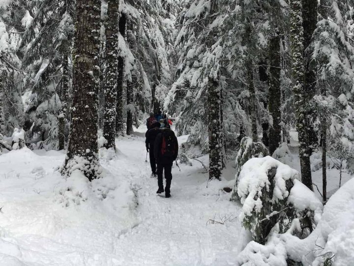 How to Take a Winter Hike in Mount Rainier National Park
