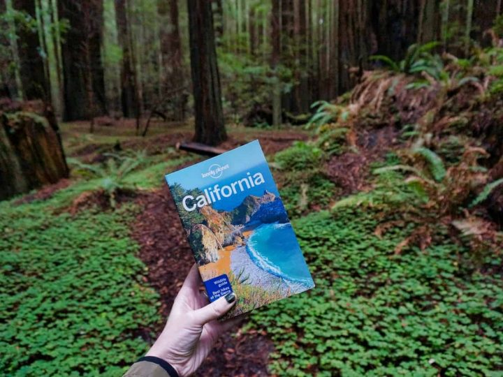 The V&V California Travel Guide