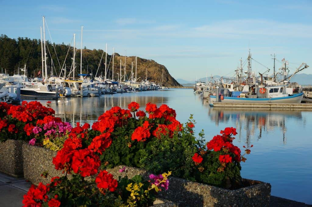 Anacortes Travel Guide - Cap Sante Marina