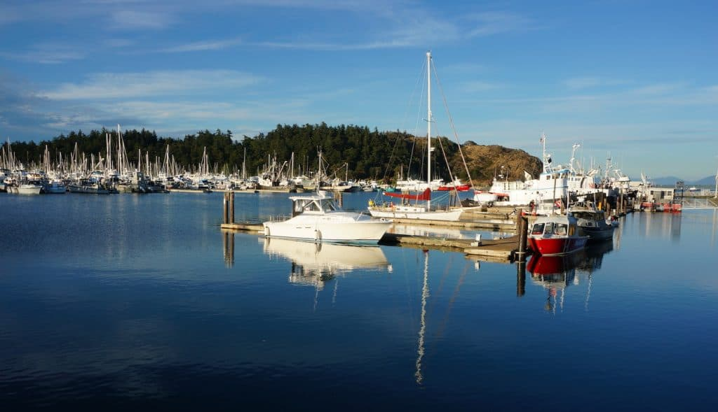 Anacortes Travel Guide - Cap Sante Marine