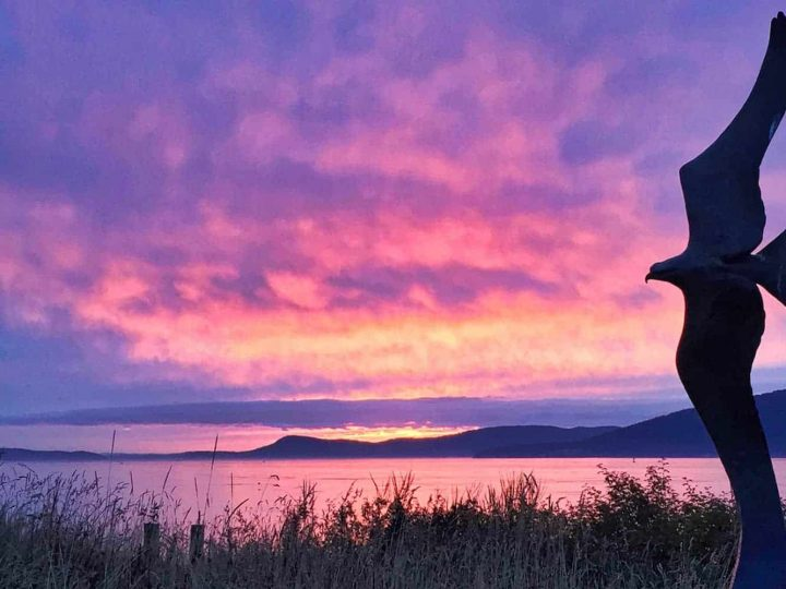 The 8 Best Things to Do in Anacortes for a Weekend Trip