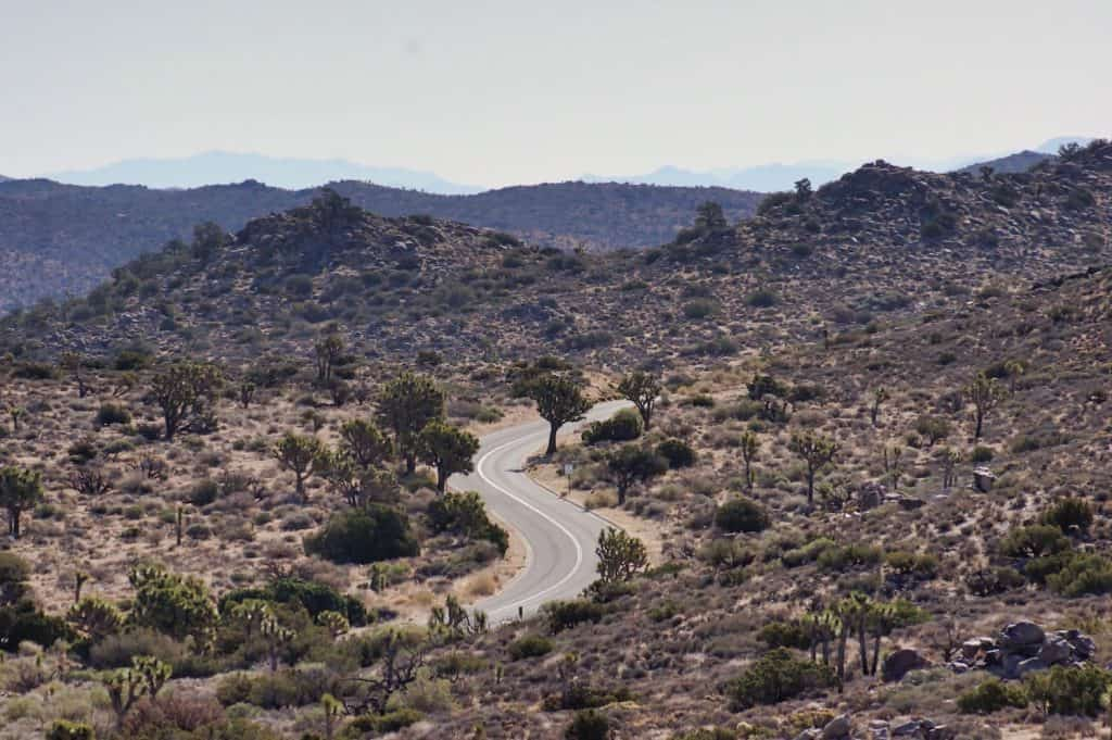 Joshua Tree Weekend Itinerary - Road inside the park