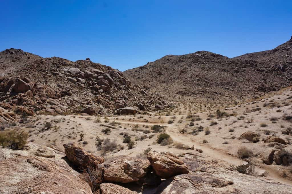 Joshua Tree Weekend Itinerary - 49 Palms Oasis