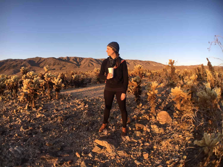 Joshua Tree Weekend Itinerary - Cholla Cactus Garden