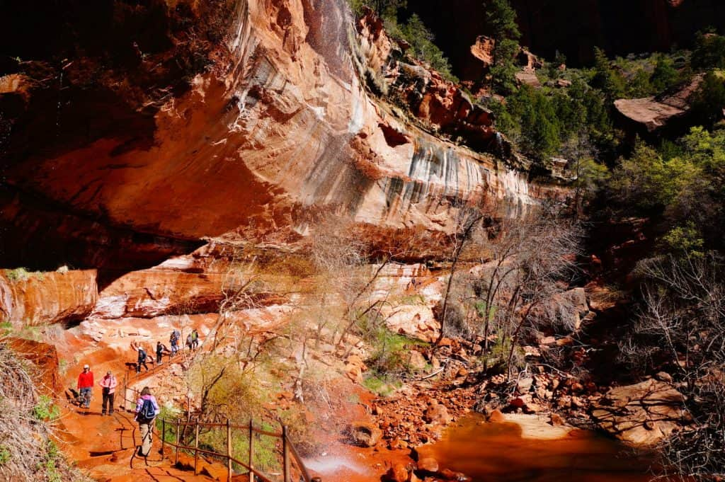 1 Day in Zion National Park - Emerald Pool Trails