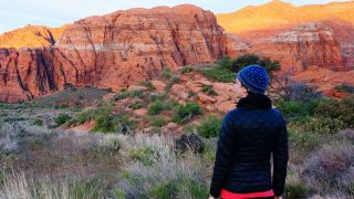 1 Day in Zion National Park - Hero