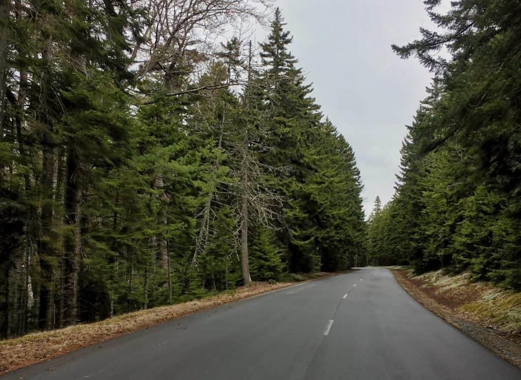Acadia National Park - Park Loop Road
