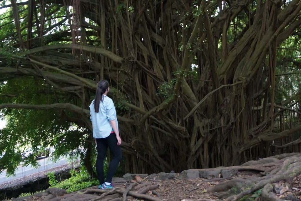 Hawaii Packing List - Valerie at the Banyan Tree