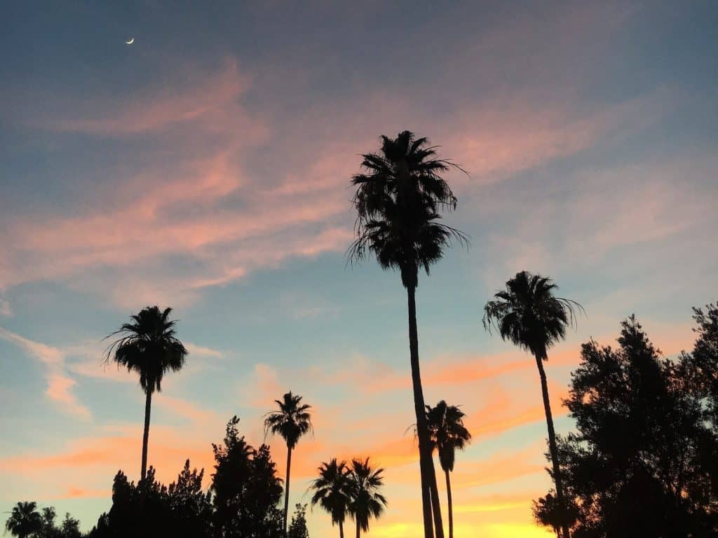 3 Days in Scottsdale - Sunset