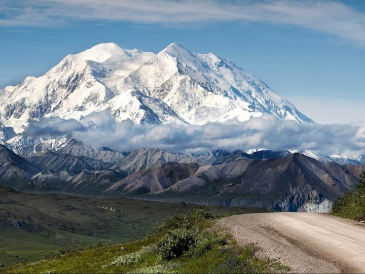How to Visit Denali in Summer 2021