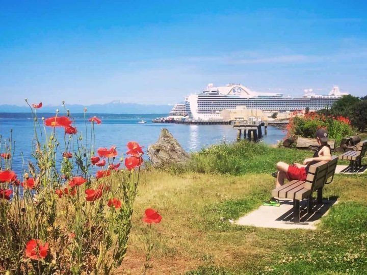 The 6 Best Alaska Cruise Excursions in Seattle