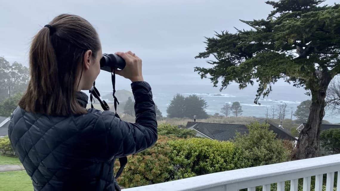 Pacific Coast Highway Hotels Hero