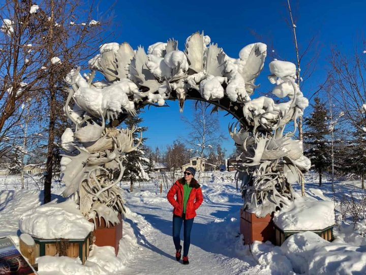 The 7 Best Things to Do in Fairbanks in the Winter