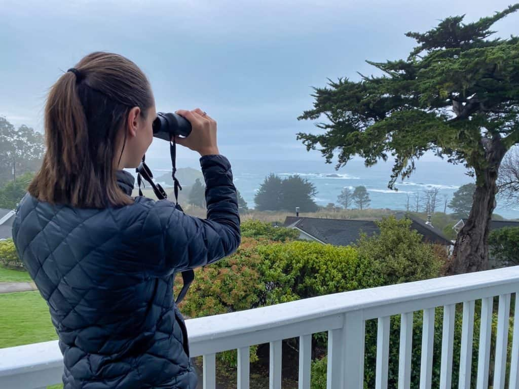 Mendocino Weekend - Whale Watching
