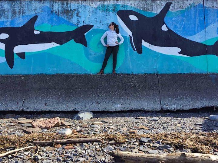 5 Reasons to Visit Alaska in the Summer
