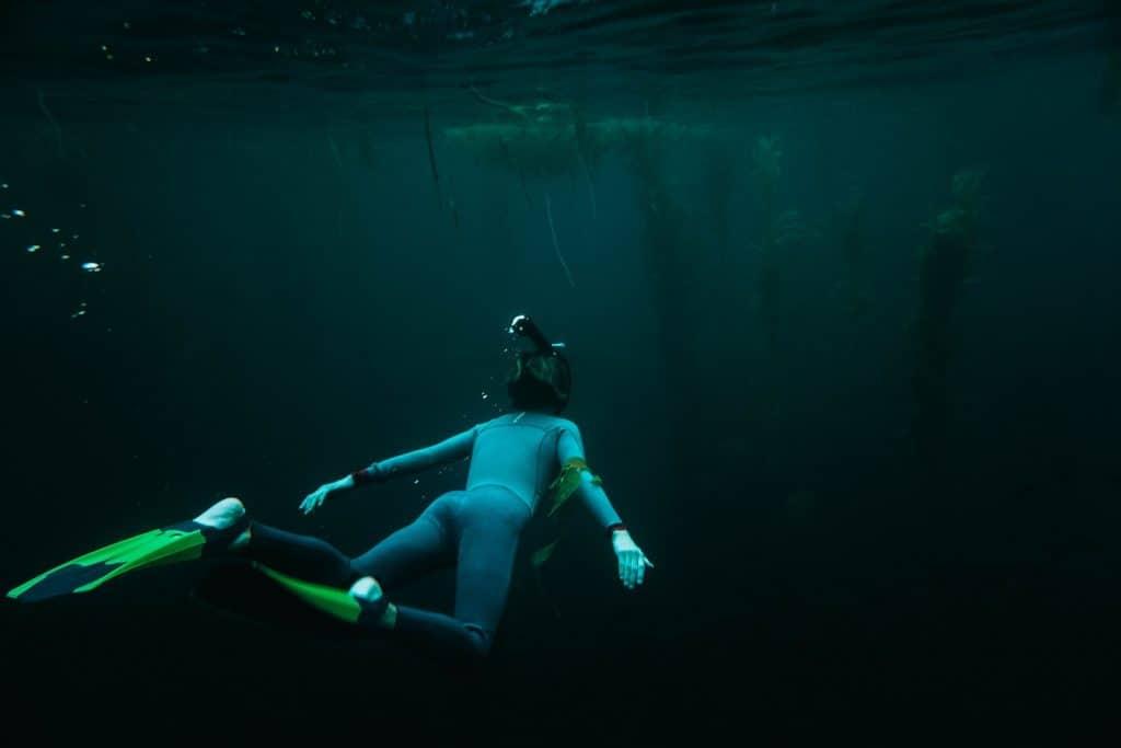 California Bucket List - Kelp Diving