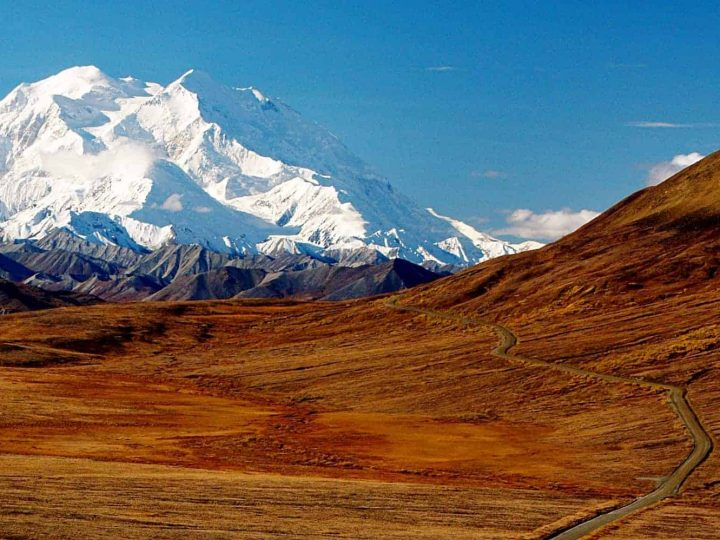 21 Incredible Denali Facts & Statistics