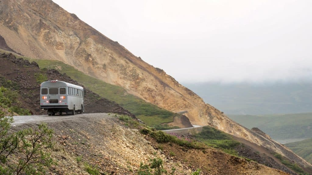 Things to Do in Denali - Bus Tours