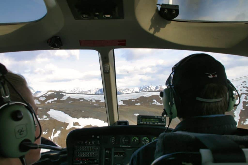 Things to Do in Denali - Helicopter Tours