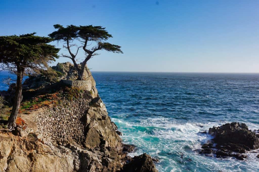 17 Mile Drive - Lone Cypress