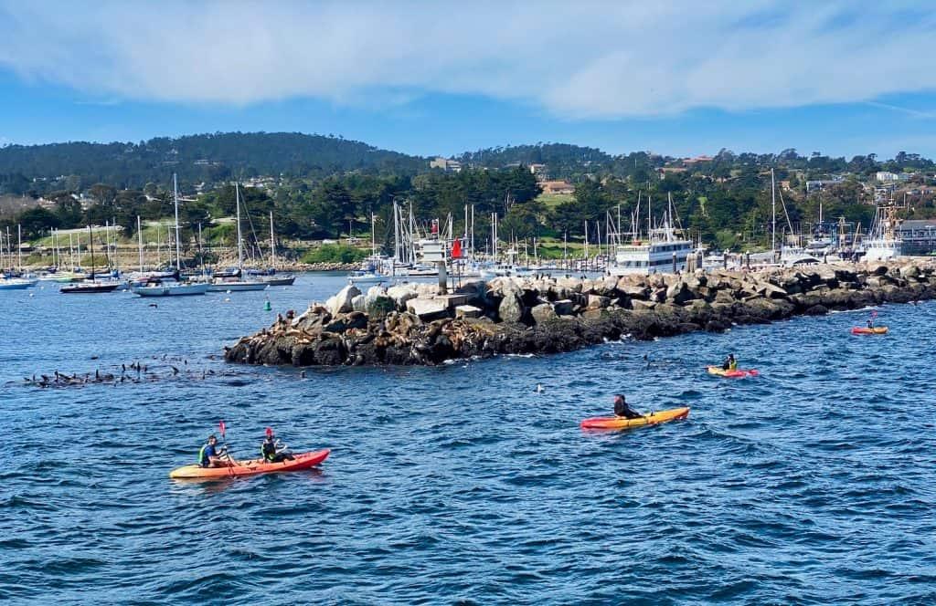 Kayaking in Monterey