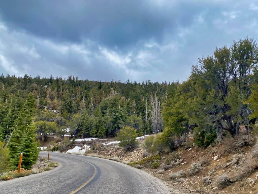 One Day in Great Basin National Park - Wheeler Peak Scenic Drive