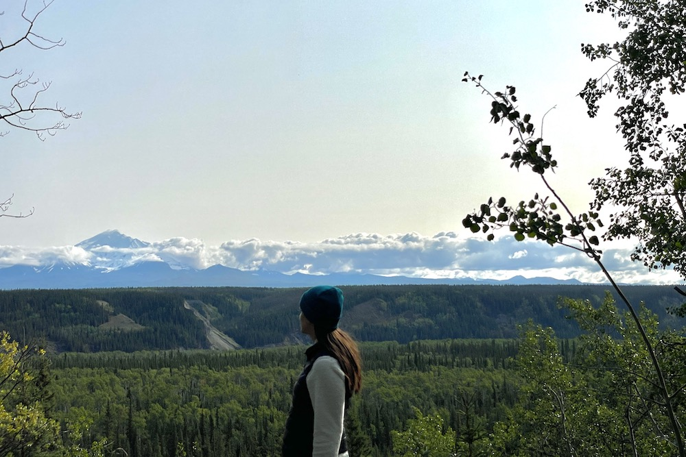 John Hall's Alaska Review Hero