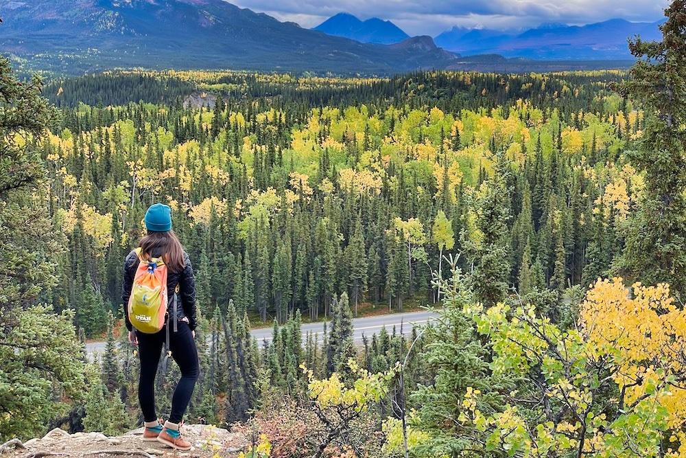 Denali National Park Itinerary Hero