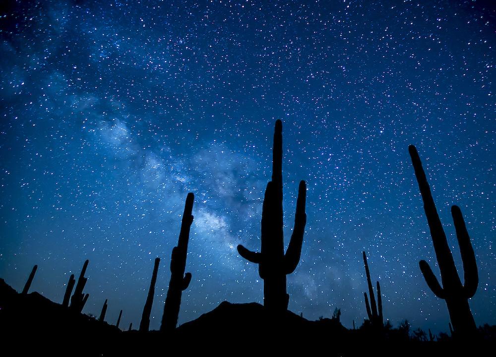 Saguaro National Park Itinerary - Saguaros at Night